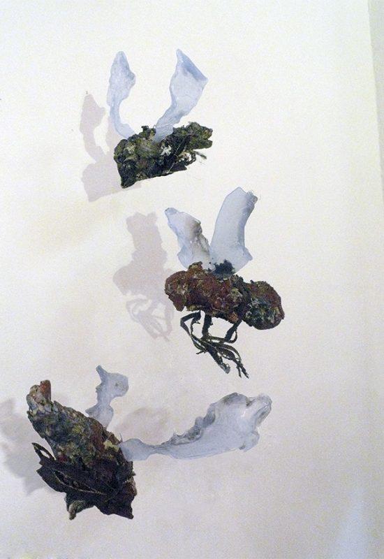 10 Les trois mouche Berend2012